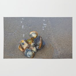 Sea pearls Rug
