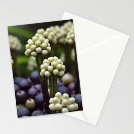 Green Aralia Flowers Stationery Cards
