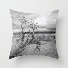 Death Valley I Throw Pillow