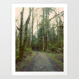 Walking Path Watershed Reserve Redmond Washington Art Print