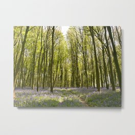 Passage through the Woods Metal Print
