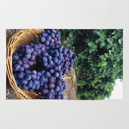 Grape Vineyard Rug