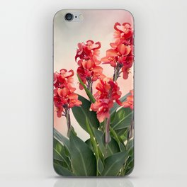 Blossom of Red Canna lily flowers iPhone Skin