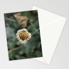 Winter Flower Stationery Cards