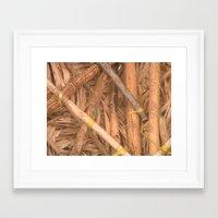 lizard Framed Art Prints featuring Lizard by Kammy Nature Prints