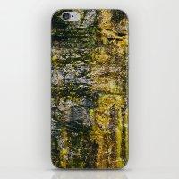 moss iPhone & iPod Skins featuring Moss by Jillian VanZytveld
