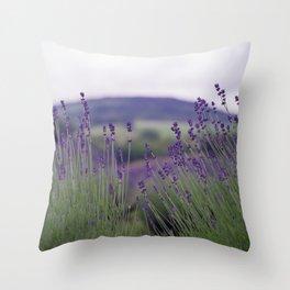 Lavender Fields Forever Throw Pillow