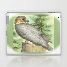 Merlin Falcon (Keir) Laptop & iPad Skin
