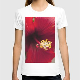 Scarlet Ruby Red Tropical Hibiscus Flower Chic Close-Up T-shirt