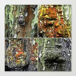 Tableau of Archetypal Structures Canvas Print