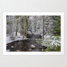 Winnebago Brook, Winter #2, Adirondacks Art Print