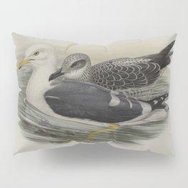 352 Larus fuscus. Lesser Black backed Gull Pillow Sham