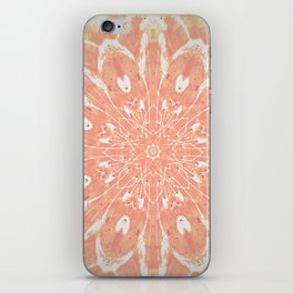 Peaches and Cream iPhone Skin