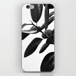 Ficus Elastica Black & White Vibes #1 #foliage #decor #art #society6 iPhone Skin