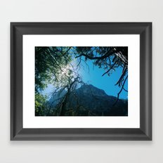 ZMT Framed Art Print