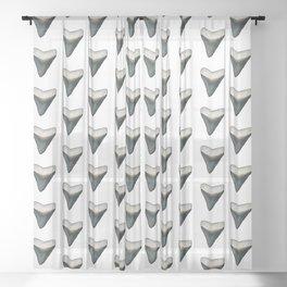 Fossilized Shark Teeth Sheer Curtain