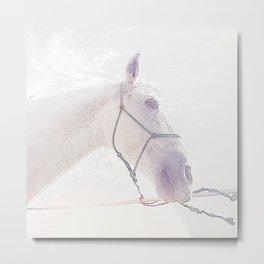 caballo blanco Metal Print