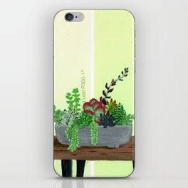 Cacti and Succulents on Greens iPhone Skin
