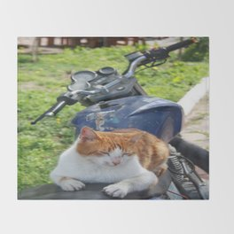 Ginger and White Tabby Cat Sunbathing on A Motorcycle Throw Blanket