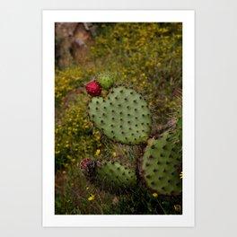 Baja: Love Cactus Art Print