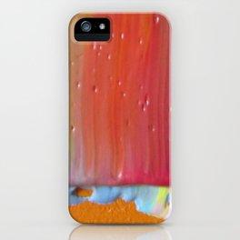 Details 2011 iPhone Case