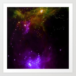 The Cosmos (purple and yellow) Art Print