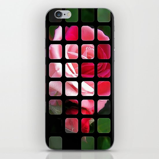 Pink Roses in Anzures 2 Art Rectangles 1 iPhone & iPod Skin