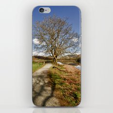 The Grasmere Tree iPhone Skin