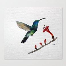 Messenger 007  Canvas Print