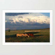 Horse Creek, WY Art Print