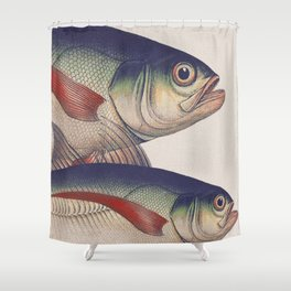 Fish Classic Designs 5 Shower Curtain