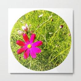 Wild Flowers (Circle) Metal Print