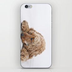 a little puppy dog iPhone & iPod Skin