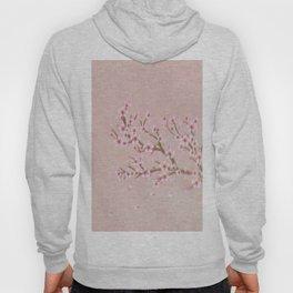 Cherry Blossom Branch Hoody