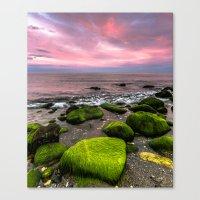 moss Canvas Prints featuring Moss by Wanowicz Grzegorz