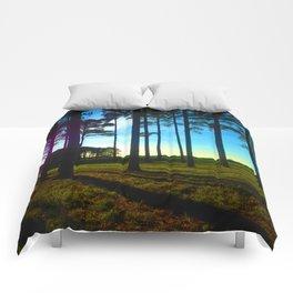 Light and Shadow Comforters