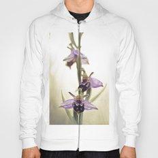 Ophrys Apifera Hoody