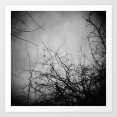 Branches and Bird Art Print