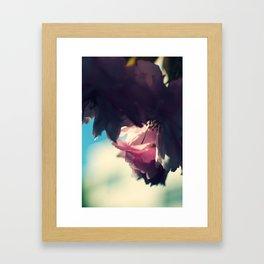 sakura - close up Framed Art Print