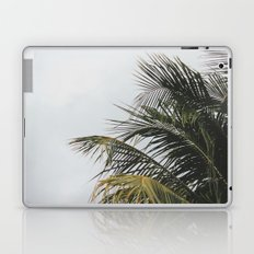 palm treee Laptop & iPad Skin