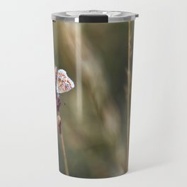 Brown Argus butterfly Travel Mug