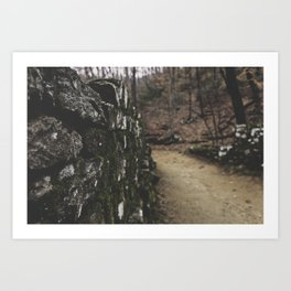 Wall 001 Art Print