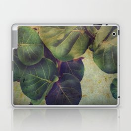Sea Grape Laptop & iPad Skin