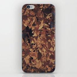 Intimate Ginkgo iPhone Skin