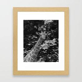 What's on Framed Art Print