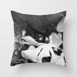 Shedding the Old Throw Pillow