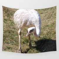 ostrich Wall Tapestries featuring Ostrich by Sarah Shanely Photography