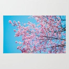 Sakura 05 Rug