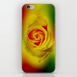 Abstract in Perfection - Rose iPhone Skin