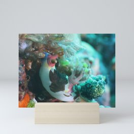 Nembrotha nudi munching on algea Mini Art Print